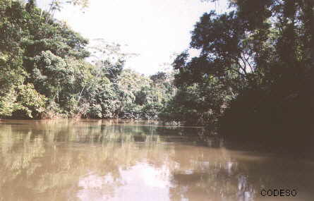 Amazon jungle: drinking water dotation and electric energy with photovoltaic systems